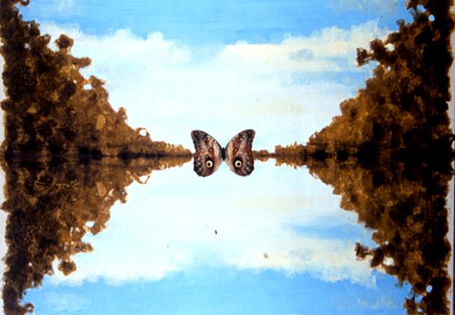 http://www.johnkeaneart.com/assets/images/medjpg/36-Lepidoptery-Symmetry.jpg