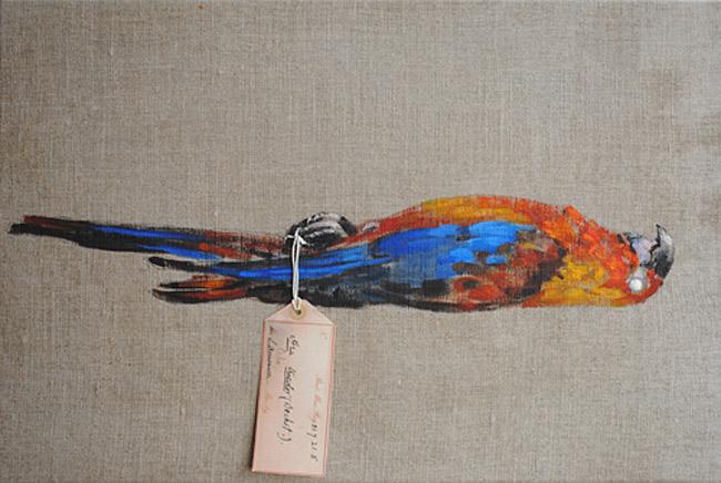 Dead Parrot Sketch