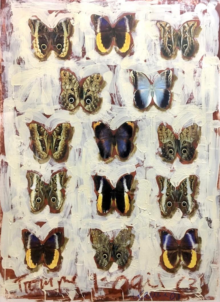 Trompe L'Oeil 2 2001, oil/beeswax/injet/paper 114x84cm